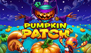 ec-desktop-haban-pumpkin-patch