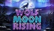wolf-moon-rising-thumbnail