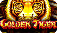 golden-tiger-thumbnail-rounded-image