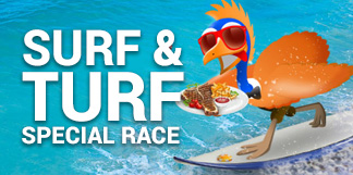 Surf and Turf Casino Race