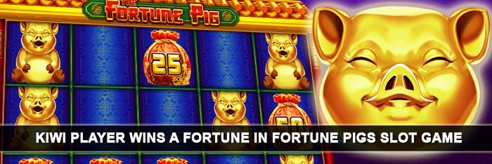 fortune-pig-slot-big-win-emucasino